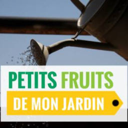 Action Petits Fruitiers - Agrandir l'image